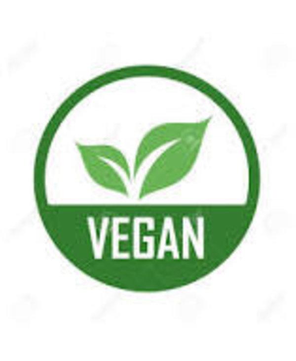 Birkenstock Women's  Arizona Platform Vegan 1015806