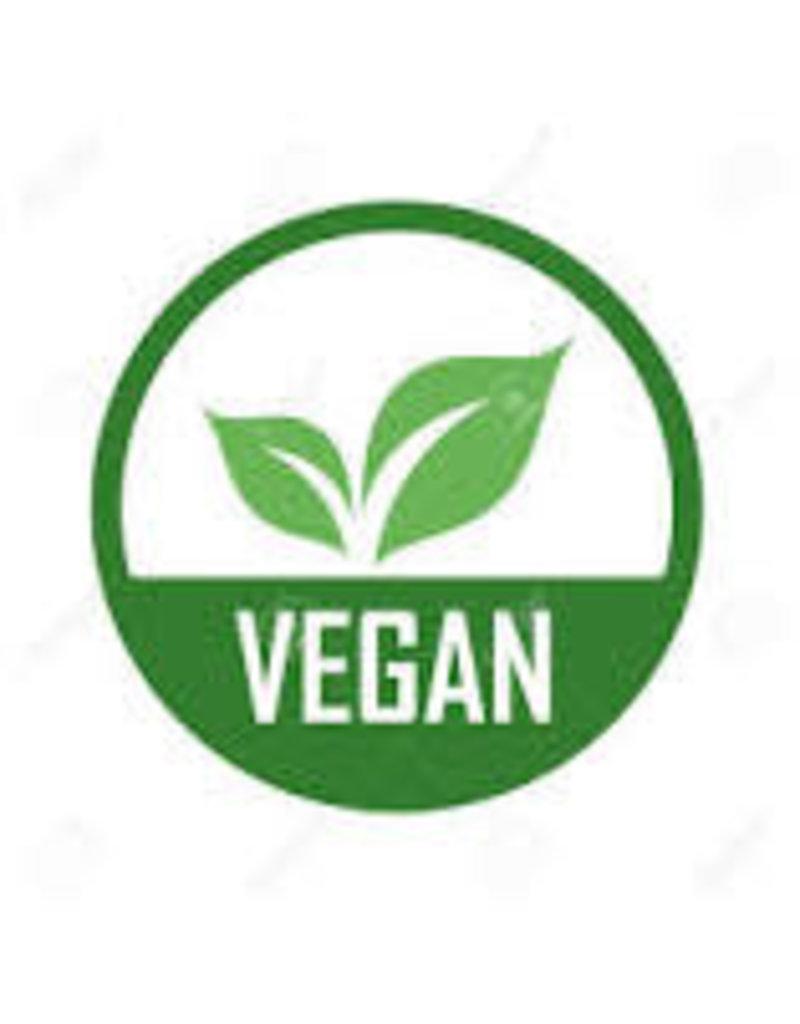 BIRKENSTOCK Birkenstock Women's  Arizona Platform Vegan 1015806