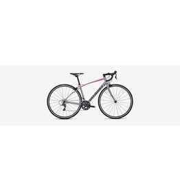 SPECIALIZED 2019 DOLCE - Satin / Gloss / Cool Gray / Acid Pink 48