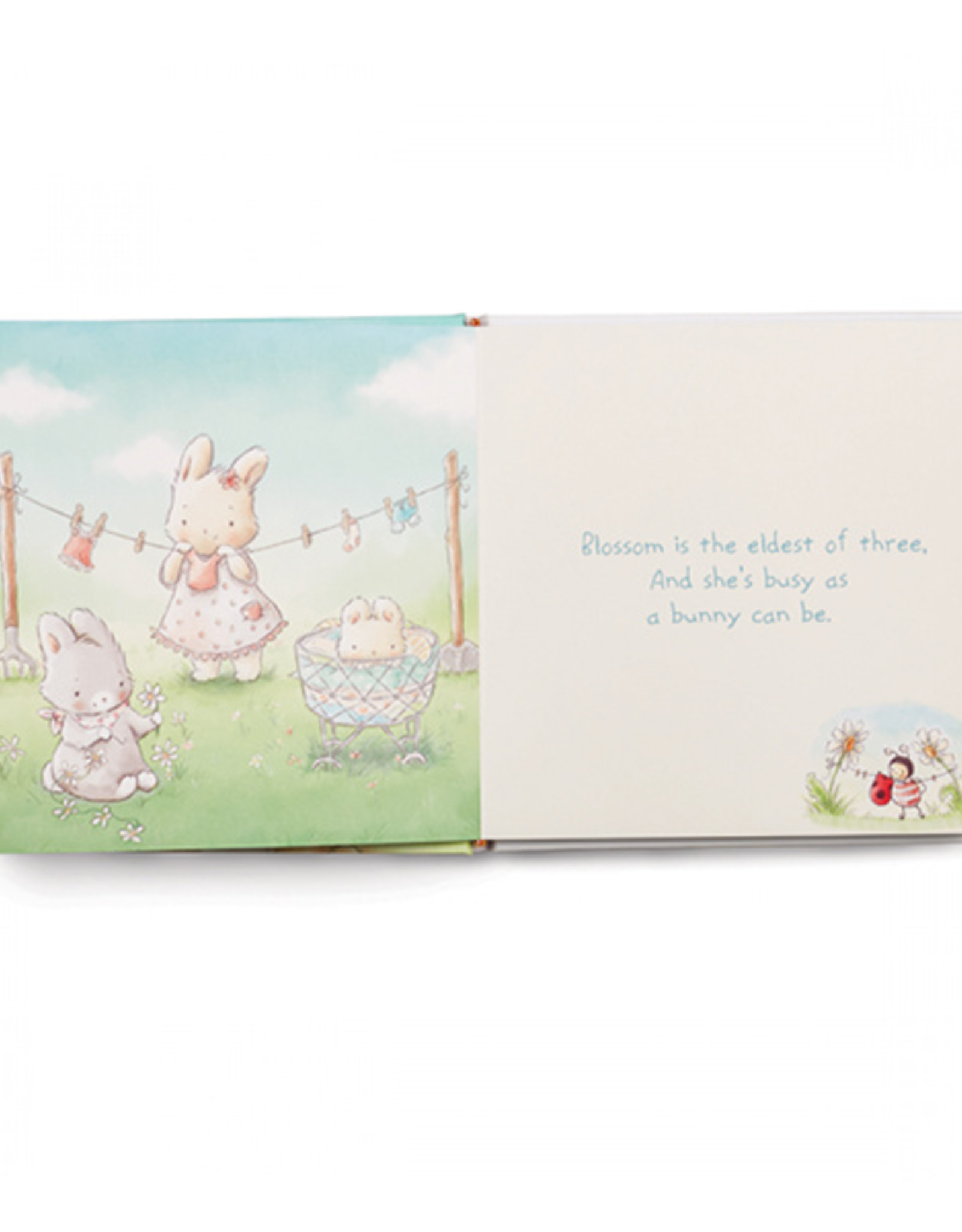 Bunnies By The Bay Book: Friendship Blossoms
