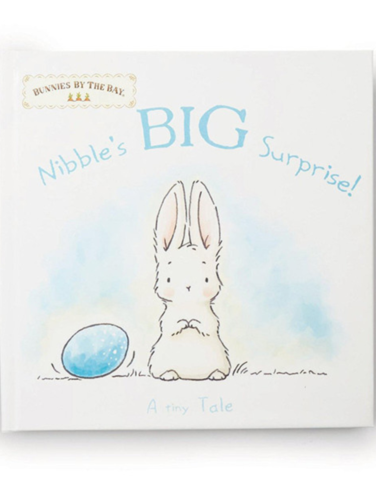 Bunnies By The Bay Book: Nibble's Big Surprise