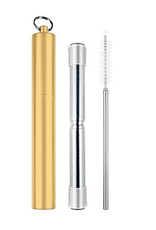 Avanti Homewares Telescopic Travel Straw Champagne
