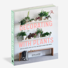 Artisan Books Decorating with Plants