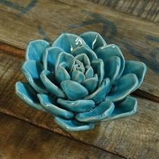 Slate Decorative Ceramic Succulent