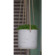 Slate Hanging Planter