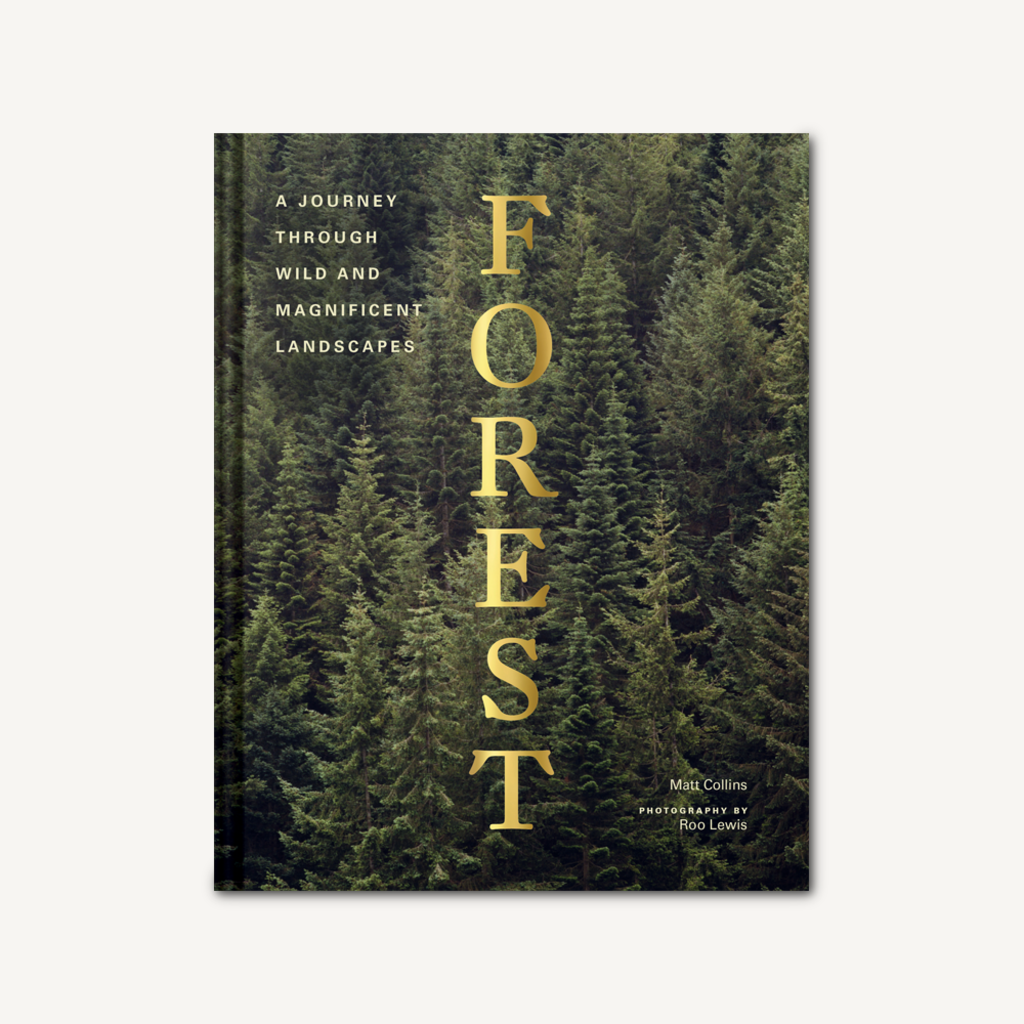 """Chronicle """"Forest"""""""