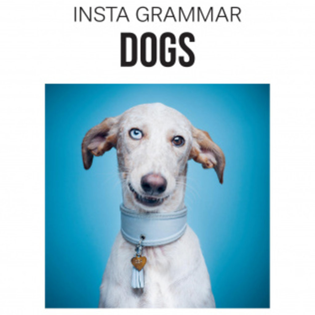 """Insta Grammar"""