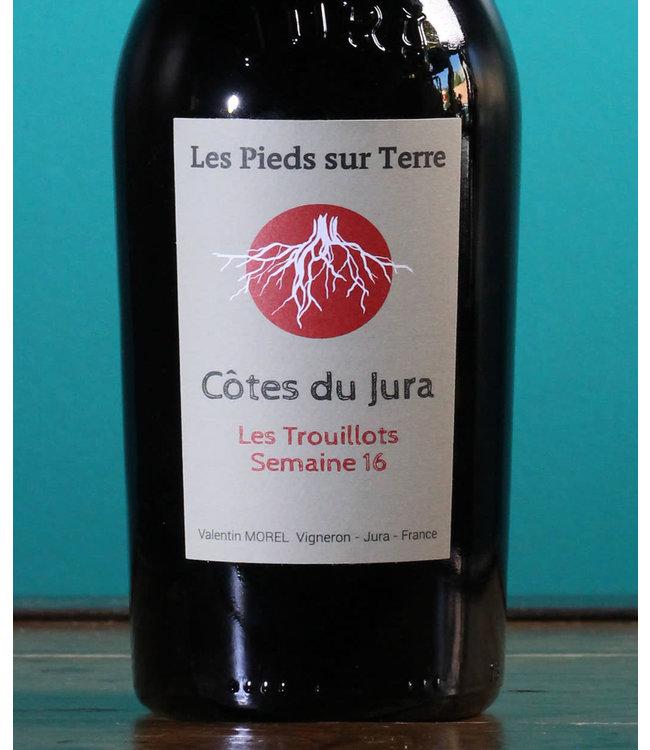 Valentin Morel, Les Pieds sur Terre Côtes du Jura Les Trouillots Semaine 2017