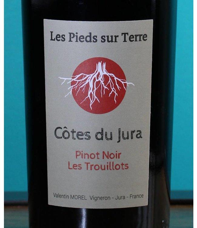Valentin Morel, Côtes du Jura Pinot Noir Les Trouillots 2016