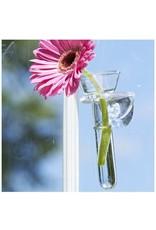 Wallflower Hanging Vase