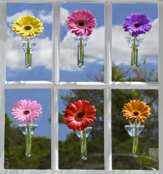 Wallflower Hanging Vase