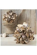 Oyster Shells Decorative Ball - Small