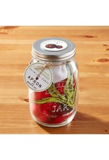Farm-to-Table Vegetables Apron & Mason Jar