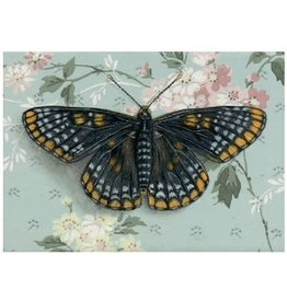 Print- Baltimore Checkerspot Butterfly, 8.5x11