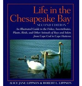 Johns Hopkins University Press Life in the Chesapeake Bay: An Illustrated Guide