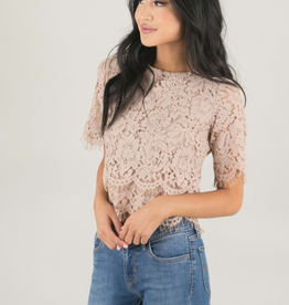 Eye Lace Elegant Crop Top