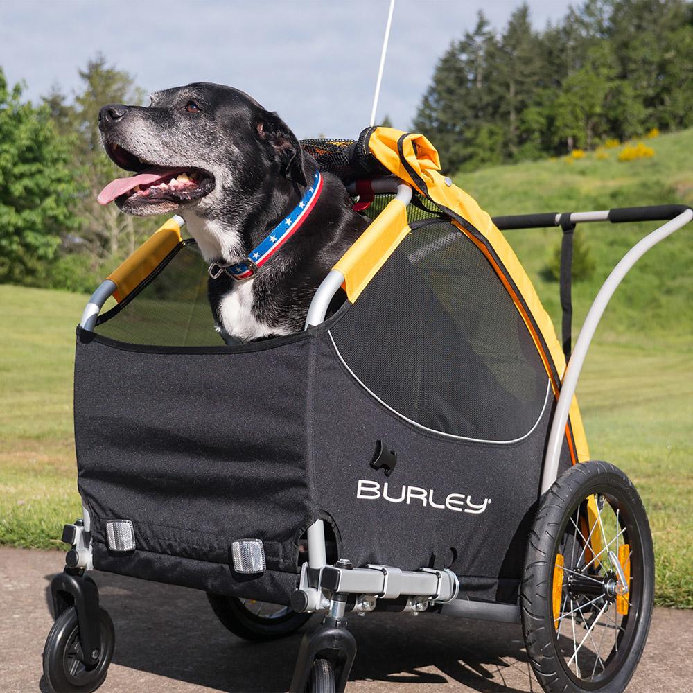 BURLEY Tail Wagon-3
