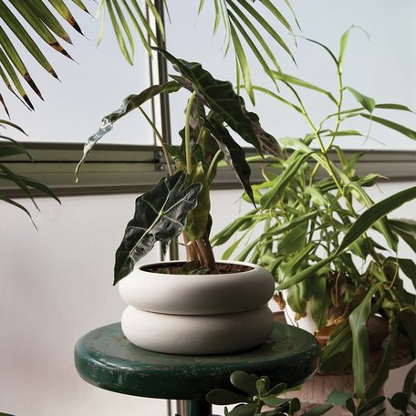 Planters + Accents