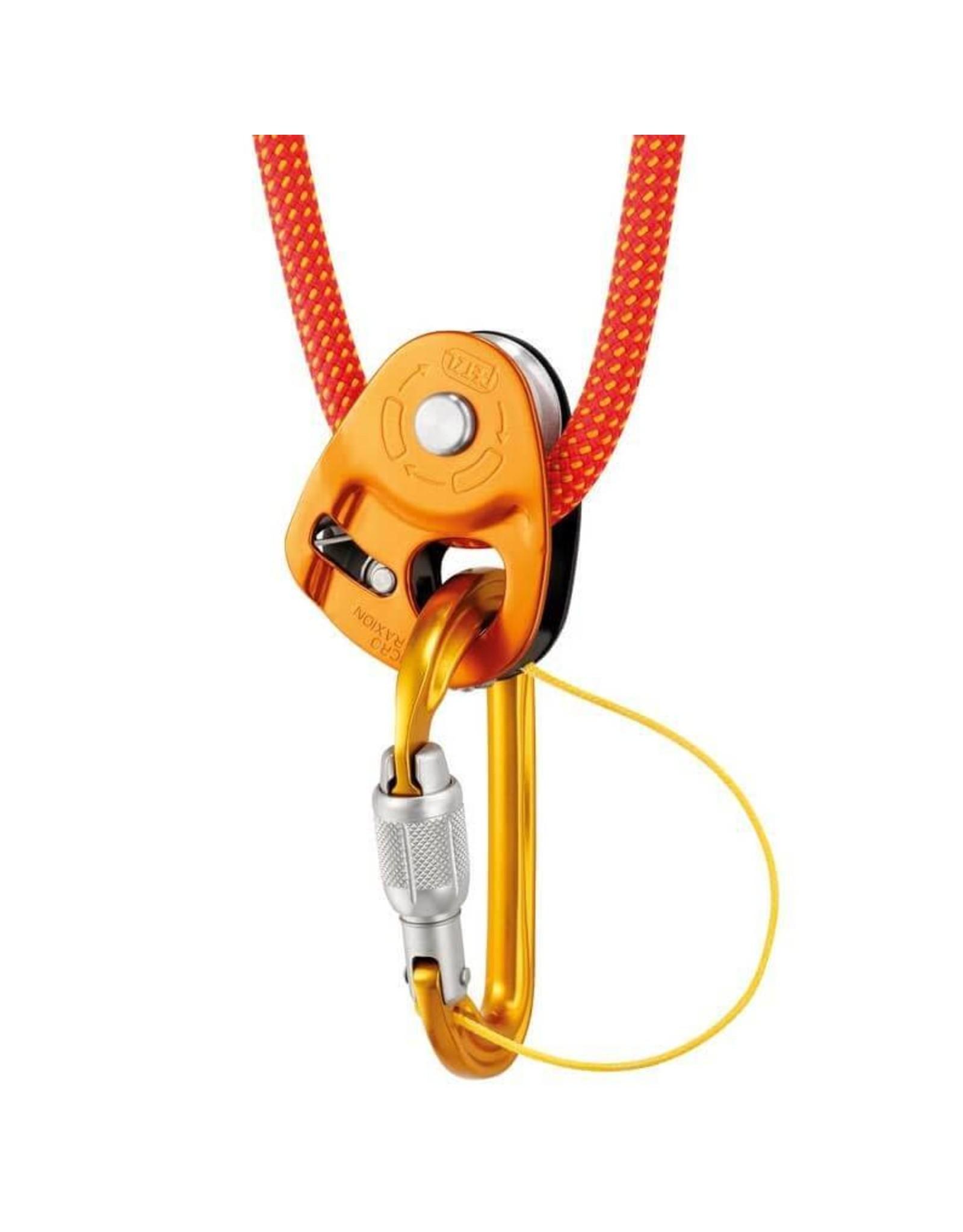Petzl Petzl Sm'D Screw Lock Carabiner