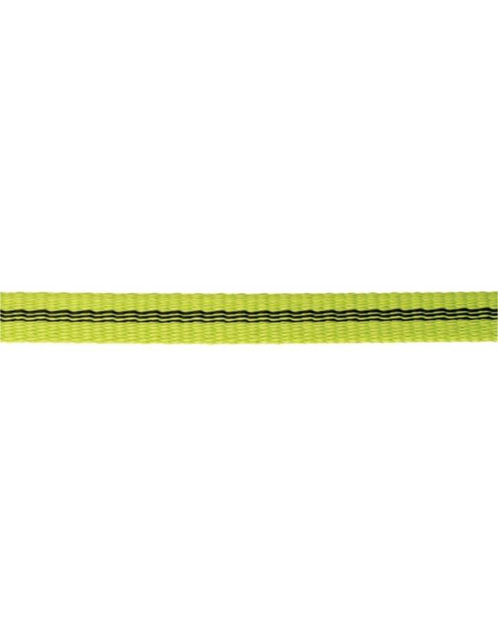 Edelrid Edelrid Tech Web 12 mm