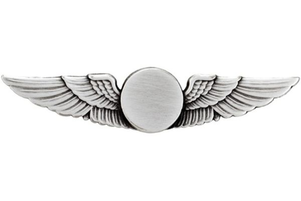 Pin: Classic Feathered Wings Oxidized