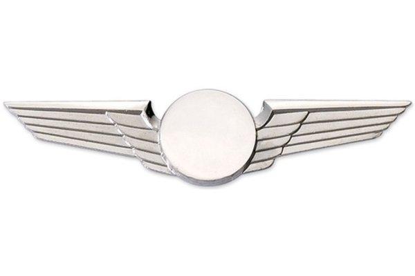 Modern Wing Midsize Silver,