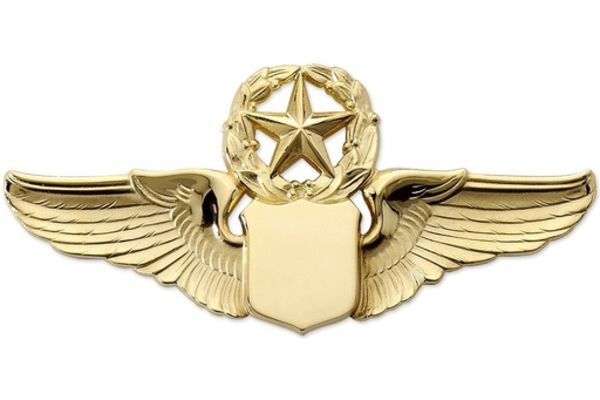 "Pin: 3"" Wing Shield w/ Star & Wreath Gold"