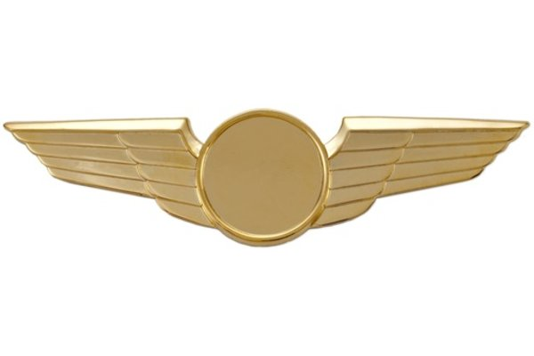 Pin: Modern Wing Plain Gold