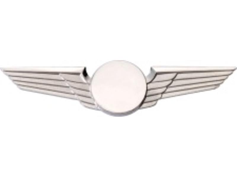 Pin: Modern Wing Silver,