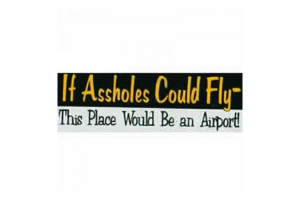 Bumper Sticker: If Assholes Could Fly *Outlet