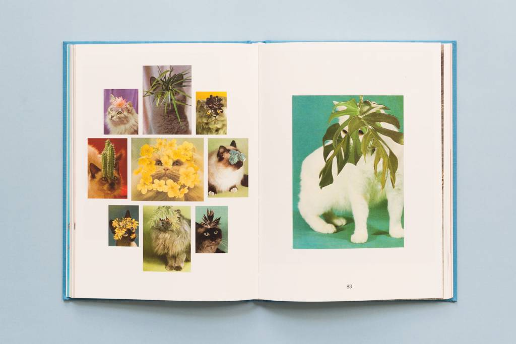 Zioxla Cats and Plants: Collectible Edition