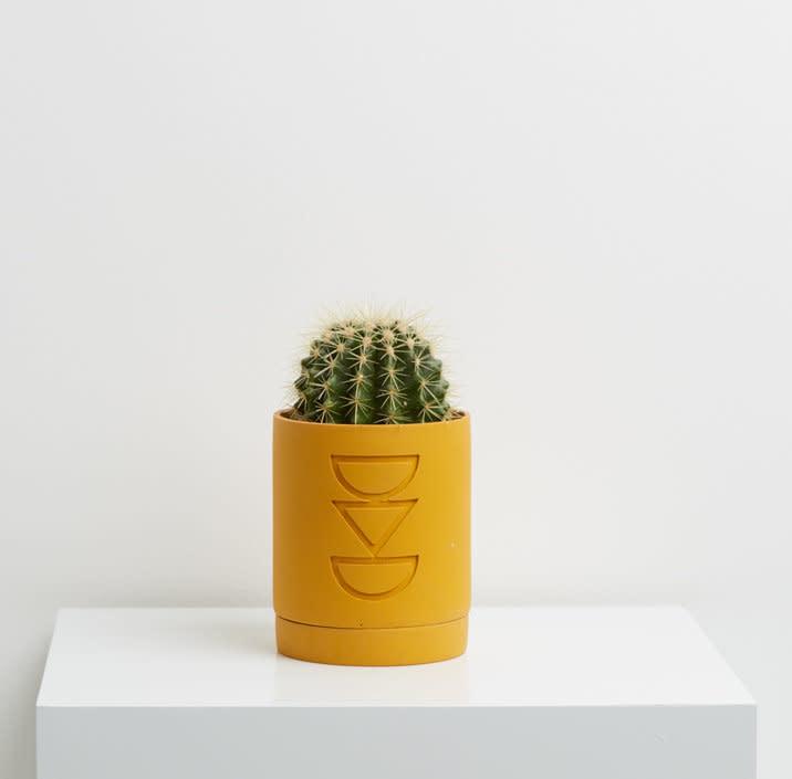 Capra Small Etch Planter Golden