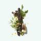 Corpus Natural Deodorant: Cedar Flora 2.6oz