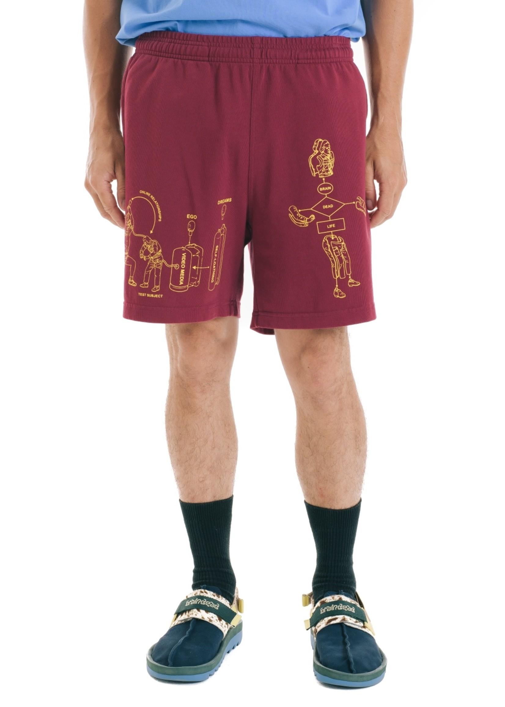 Brain Dead Tutorials Shorts in Burgundy