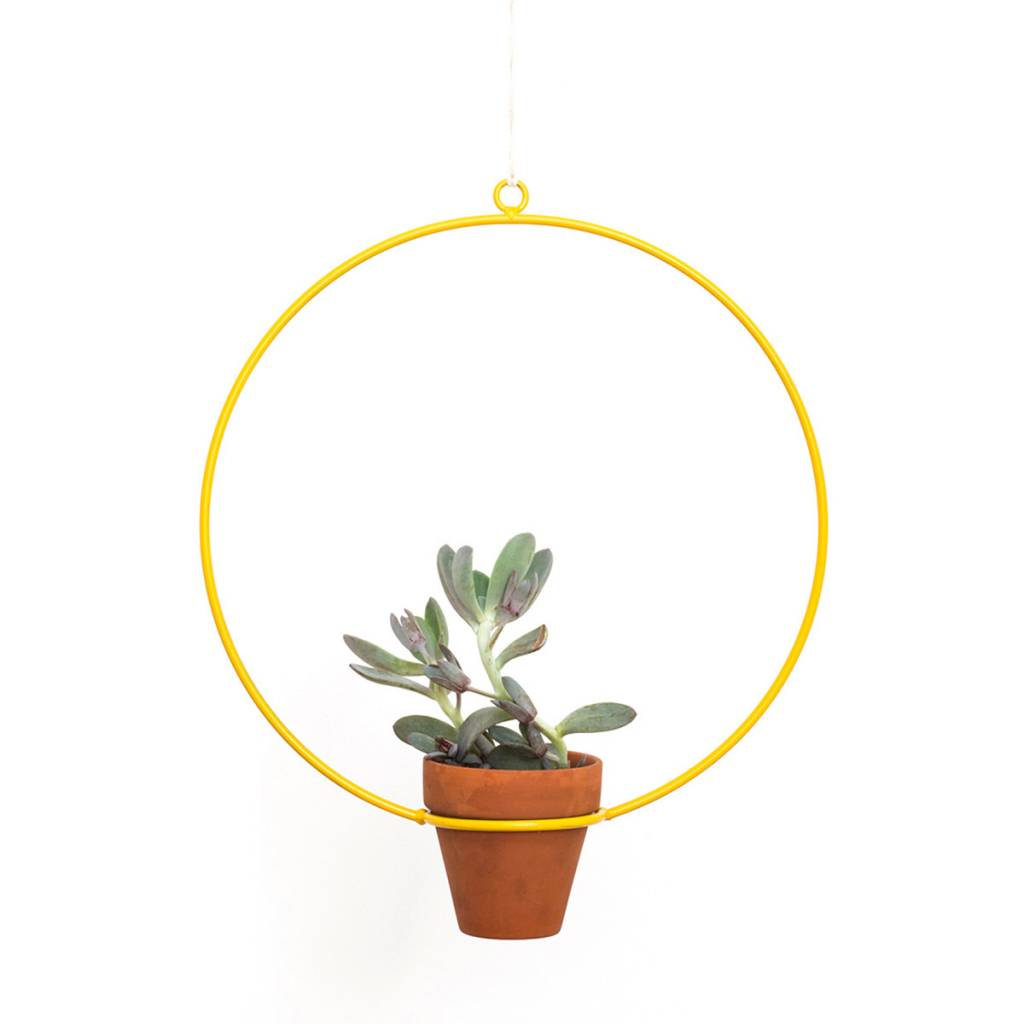 Circle Hanging Planter by New Made LA