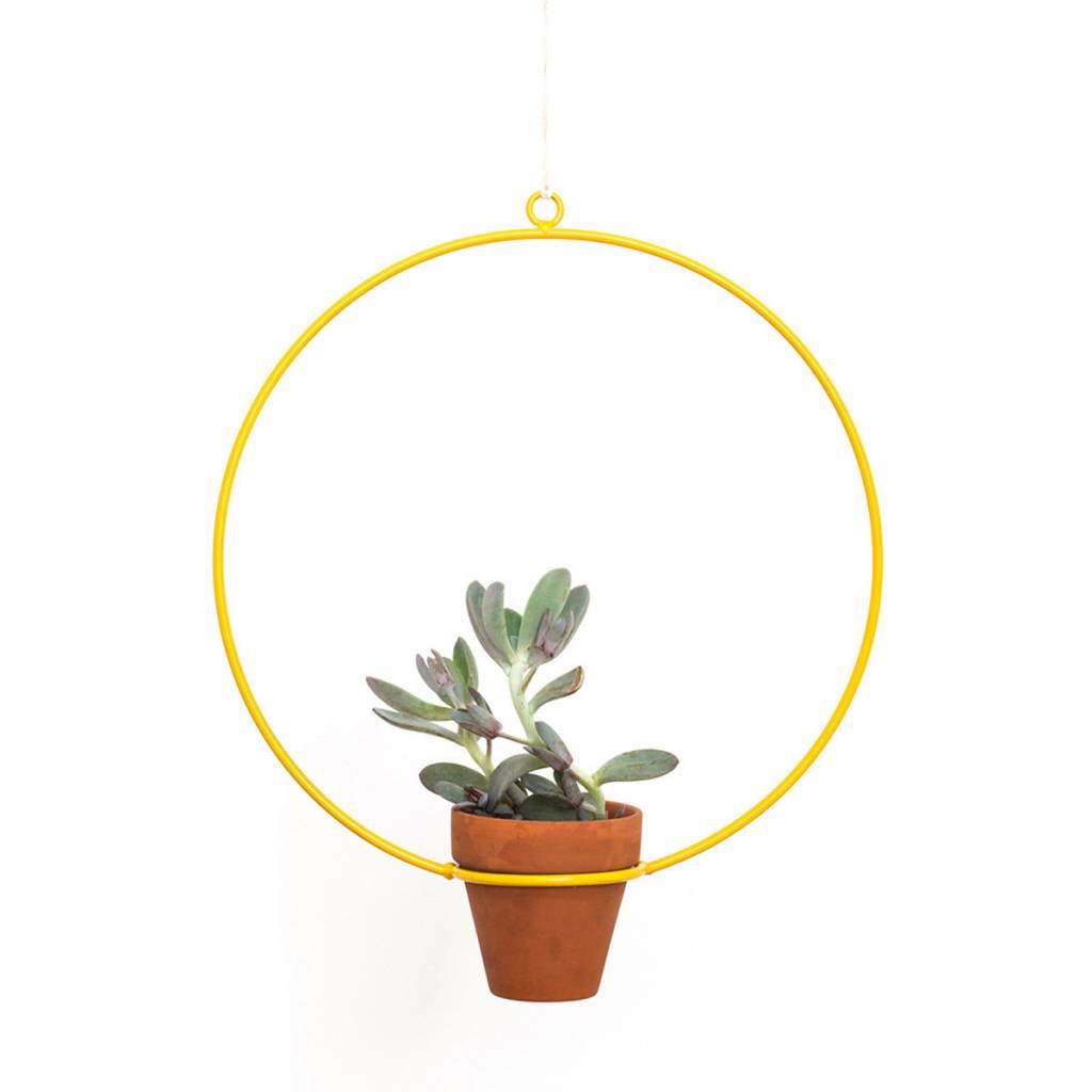 New Made LA Circle Hanging Planter by New Made LA