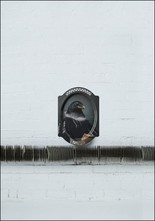 Ibride Le Corbeau Wall Tray