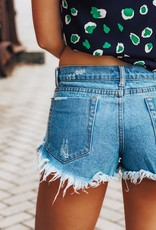 LUXE Scenic Route Denim Shorts