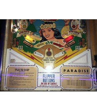 Paradise Pinball Machine