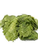 Mt. Hood Leaf Hops  (1lb)