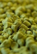 Magnum Pellet hops 1oz  13.2%