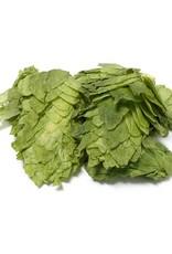 Mt. Hood Leaf Hops Alpha 7.3%  (1oz)