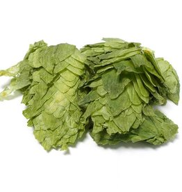 Mt. Hood Leaf Hops Alpha 7.3%  (1oz)