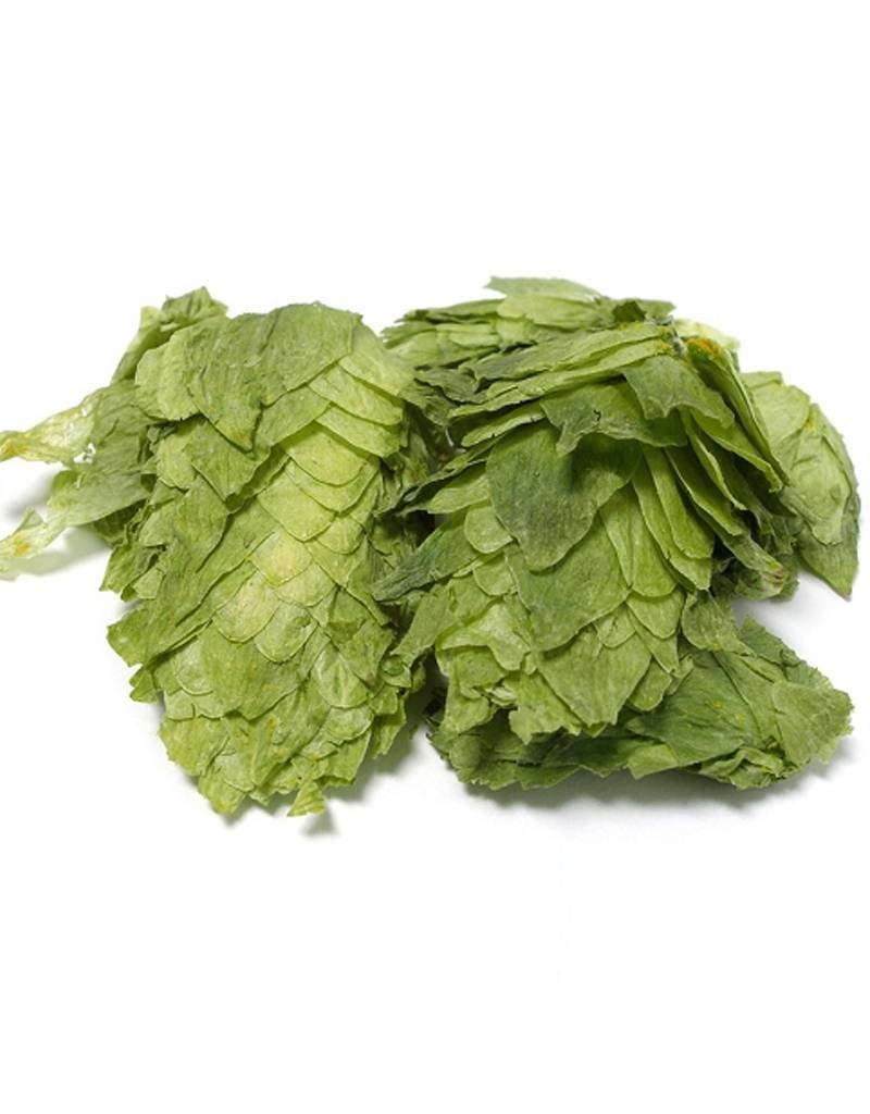 Apollo Leaf Hops (1oz)