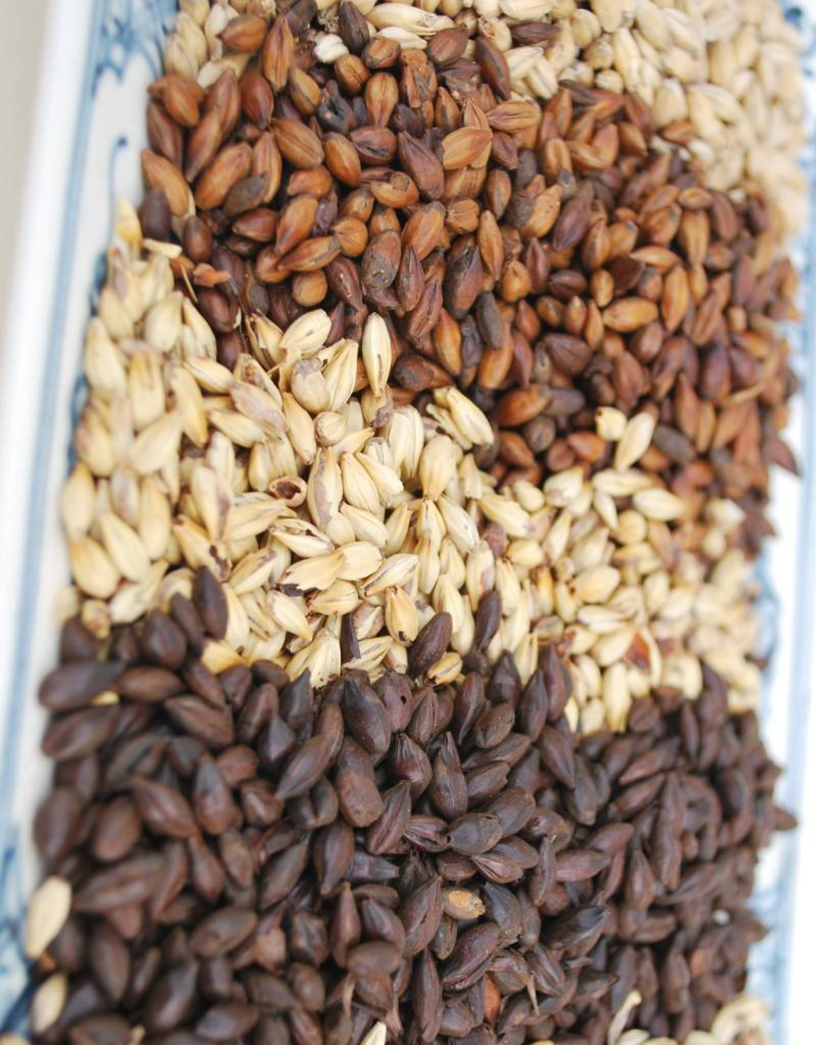 Baird Roasted Barley (55lb bag)