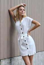 Lucca Gia Button Down Mini Dress