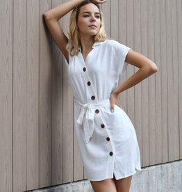 Lucca Gia Button Down Mini Dress