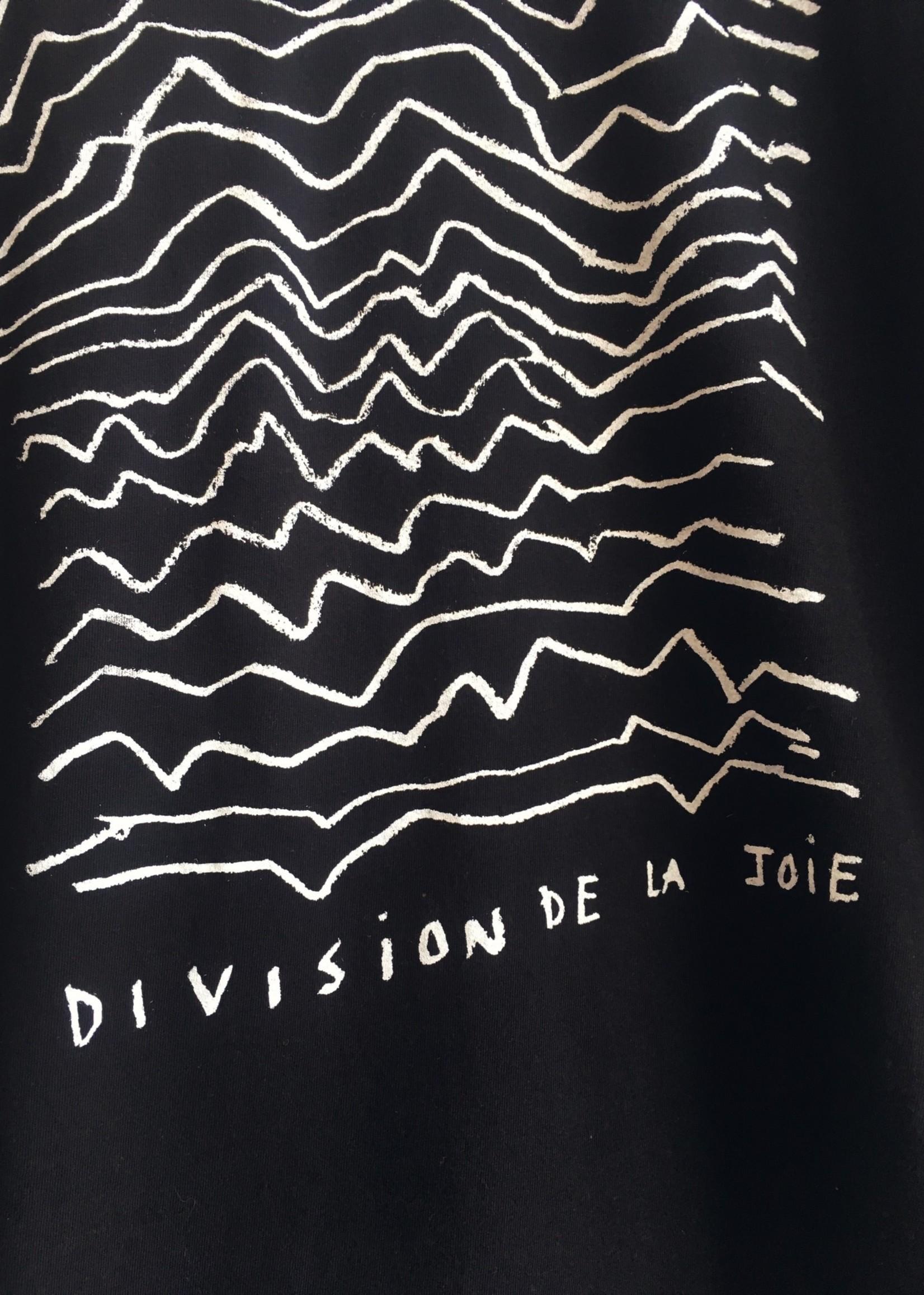 Les Roches Qui Roulent Division De La Joie T-shirt
