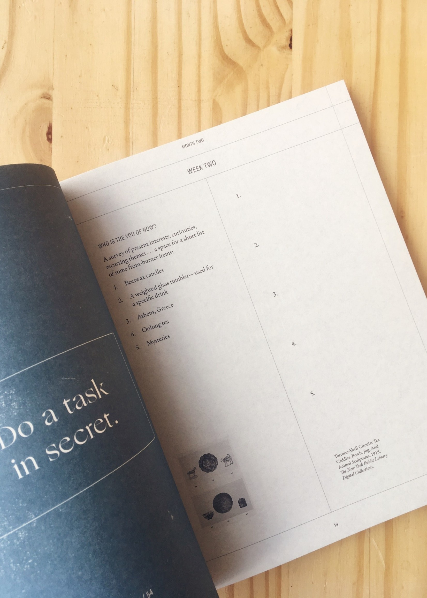 Leigh Patterson The Moon Lists Workbook