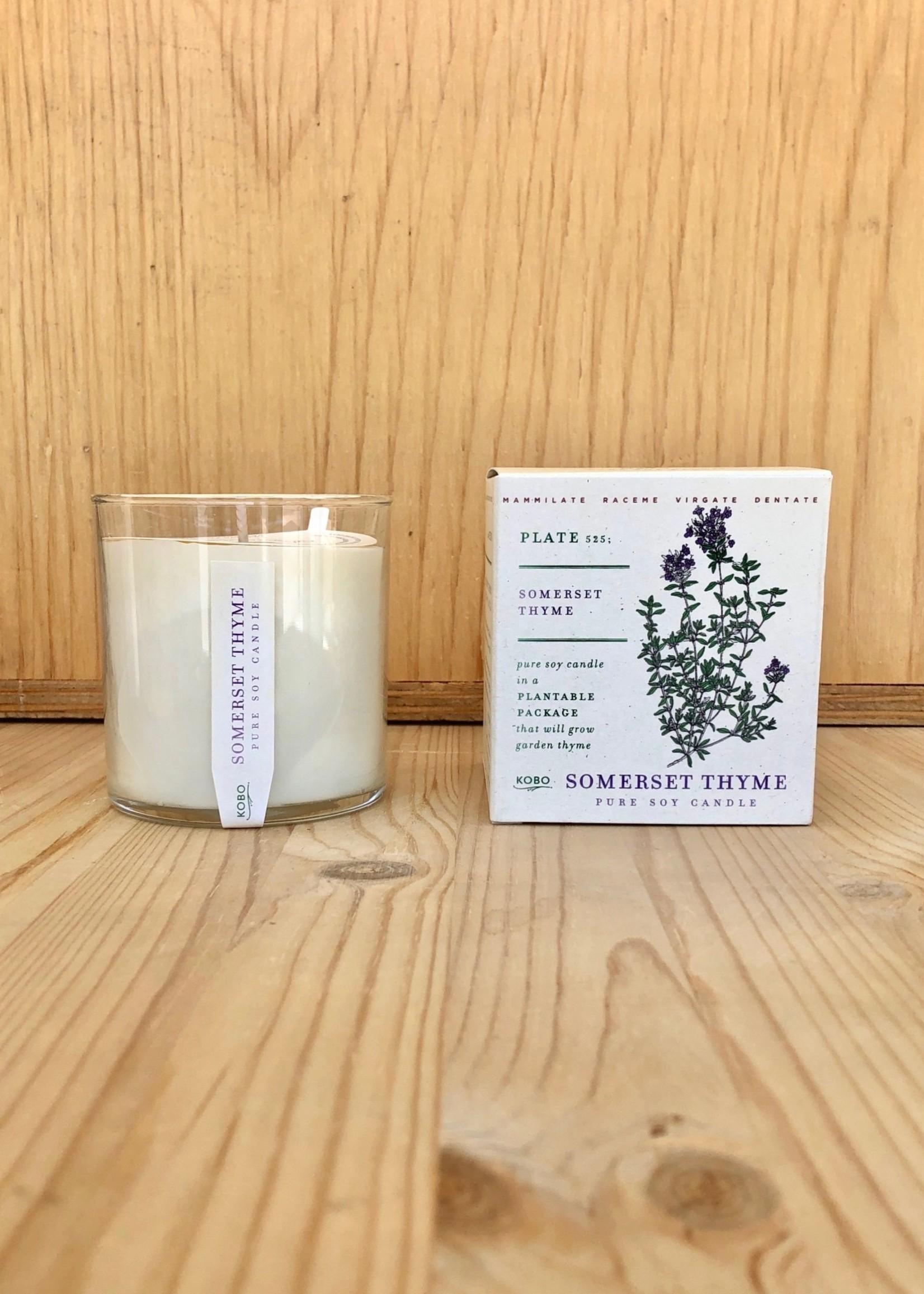Kobo Candles Bougie avec Emballage Plantable